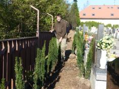 Na hřbitově je dokončována revitalizace zeleně