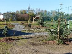 V areálu školního hřiště naší základní školy vzniká botanická zahrada