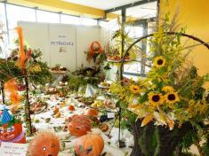 Z tradiční podzimní výstavy Život nazahradě naVýstavišti Černá louka vOstravě