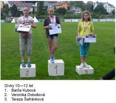 Tradiční Dětský den vareálu TJ Ludgeřovice 29.6.2014